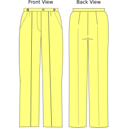 Online Pants Pattern Editing, pleated fronts, 1 week and 10 prints